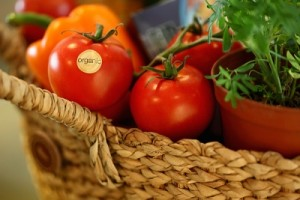 Celulit i prehrana – pobjedite celulit!